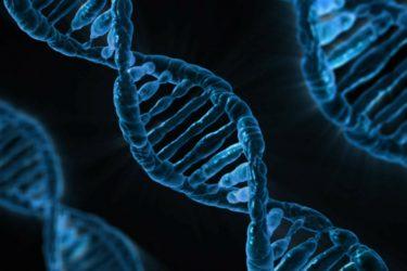 Biotecnología y Biología Molecular