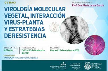 """Curso de posgrado: """"Virología molecular vegetal, interacción virus-planta y estrategias de resistencia"""""""