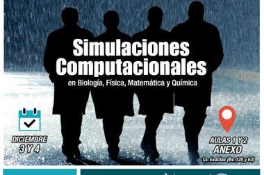 1er Reunión de líneas de Trabajo: Simulaciones Computacionales